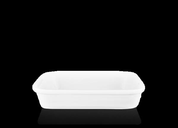 Посуда для авиакомпаний, Сапсанов